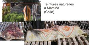 Laines teintes avec des plantes à Mamiña Grande pièce de feutre (vendue)