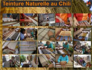Ateliers de teintures naturelles et de tissage à Pica, près de Iquique, Nord du Chili