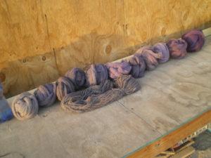 Série de laines teintes à la cochenille et au bois de Campêche, arbres que j'espère connaître quand j'irai au Mexique