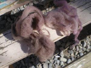 Ecahntillons de laine teints avec les locos et locates