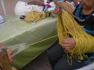 Jaune de sorona, plante détestée par tous ceux qui cultivent dans le nord du Chili - teinture lors du cours à Pica